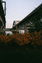 under the floating bridges